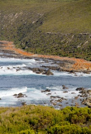 Cape Gantheaume Wilderness Protection Area
