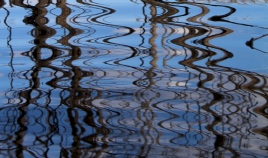 Reflections in our lagoon