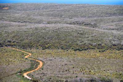Yacca Flat, Flinders Chase National Park